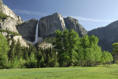 Spring meadow in Yosemite Valley Stock Photo