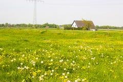Spring meadows around a rural house Stock Photos