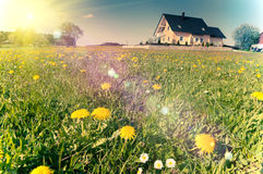 Spring meadows around a rural house Royalty Free Stock Images
