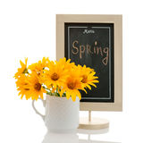 Spring menu concept Royalty Free Stock Photography