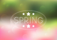 Spring mesh background Royalty Free Stock Images