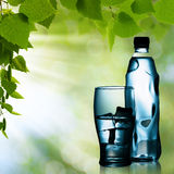 Spring mineral water Stock Image