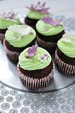 Spring mint cupcakes. Chocolate mint cupcakes on silver platter Royalty Free Stock Photo