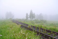 Spring mists Stock Images