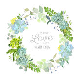 Spring mix of succulents, herbs and plants floral frame. Spring mix of succulents, herbs and plants round vector design floral frame. Cute rustic green wedding vector illustration