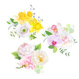 Spring mixed bouquets vector design set. royalty free illustration