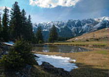 Spring in the montains. Spring landscape in romanian carpatian mountains - Piatra Craiului Royalty Free Stock Photo