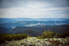 Spring in the montains Royalty Free Stock Image