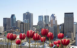 Spring in Montreal Stock Photo