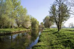 Spring mood on the river Niers near Grefrath oedt Stock Photo