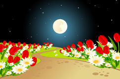Spring  Moonlight Background Stock Photo