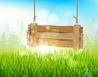 Spring morning Royalty Free Stock Image
