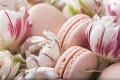 Cake macaron or macaroon and tulips, pastel colors, soft focus. Spring morning concept. Cake macaron or macaroon and tulips, pastel colors, soft focus stock photo