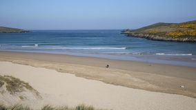Spring morning at Crantock beach North Cornwall England UK near Newquay stock video footage