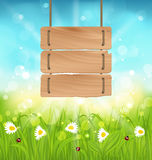 Spring morning, meadow and camomiles with wooden sign, natural l Stock Photos