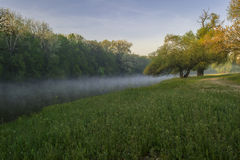 Spring morning on the riverbank. Royalty Free Stock Photos