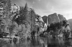Spring Morning, Yosemite Royalty Free Stock Image