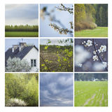Spring mosaic Royalty Free Stock Photo