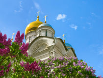 Spring in Moscow Kremlin Stock Images