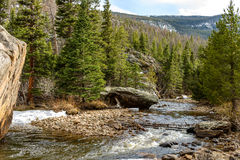 Spring Mountain Creek Royalty Free Stock Photography
