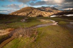 Spring mountain landscape in Corsica Royalty Free Stock Photos