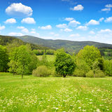 Spring mountain landscape in the National park Sumava Stock Photo