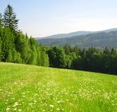 Spring mountain landscape Royalty Free Stock Photos