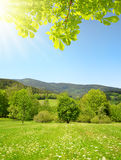 Spring mountain landscape Stock Photography