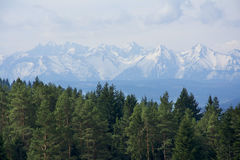 Spring in mountain. Mountain landscape in Poland, malopolskie Royalty Free Stock Images