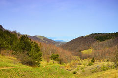 Spring mountain landscape. Stock Photo