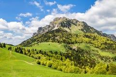 Spring mountain landscape with stony Big Rozsutec peak Royalty Free Stock Images