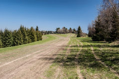 Spring mountain meadow with dirty roads, trees around and clear sky Stock Images