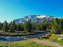 Spring Mountain with Pines Reflected in a Lake. A thawing mountain with patches of snow nestled in pine trees next to a rushing river in Yosemite Valley royalty free stock photos