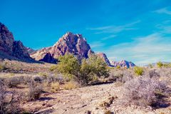 Spring Mountain Ranch State Park, Nevada, USA. Views from hiking trails in Red Rock Canyon National Park during the winter months, just outside of Las Vegas Stock Photo
