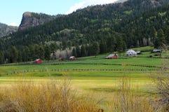 Mountainside Ranch. Spring at a mountain ranch on Wolf Creek Pass, near Pagosa Springs, Colorado, USA Royalty Free Stock Photos