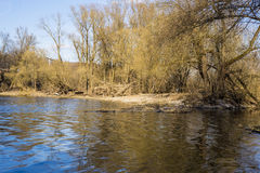 Spring mountain river with creek Stock Images