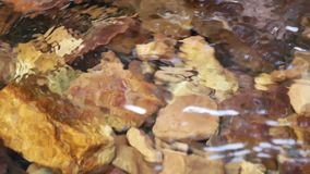 Spring mountain river. Raging clean fresh mountain river flowing stock video