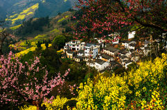 Spring mountain village. China's beautiful spring scenery of the village of jiangxi province Stock Photography