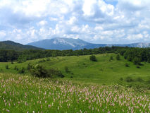 Spring in mountains. Crimean mountains a spring sunny day Stock Images