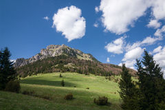 Spring mountains - Big Rozsutec hill, Little Fatra, Slovakia Royalty Free Stock Photo