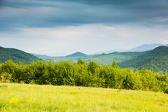 Spring in mountains.Contrast colors.Sunny glade and blue mountains. Stock Photography