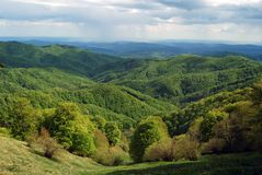 Spring in the mountains I. Spring has arrived in Buila-Vanturarita Mountains, Romania Royalty Free Stock Image