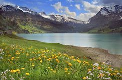 Spring mountains lake. Sunny day on the mountains Swiss lake Wagitallersee Royalty Free Stock Photo