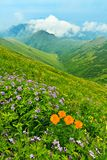 Spring mountains landscape Royalty Free Stock Photography