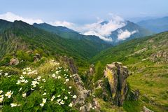 Spring mountains landscape Royalty Free Stock Photos