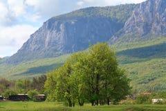 Spring mountains landscape (Crimea, Ukraine) Stock Image