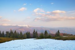 Spring in the mountains Stock Image