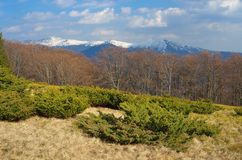 Spring in the mountains Royalty Free Stock Photography