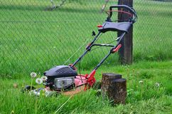 Spring mowing grass in the garden,   Royalty Free Stock Photography