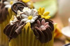 Spring muffins decorated with flower Royalty Free Stock Photo
